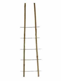Бамбукові опори