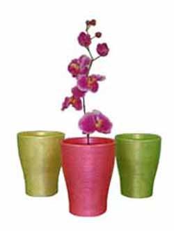 Горщики та кашпо для орхідей
