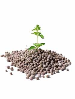 Удобрения для растений и цветов