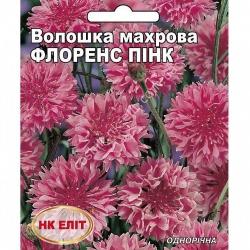 Василек Флоренс пинк