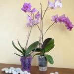 Кашпо для орхидей К14.001.16