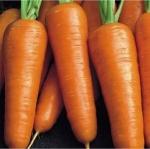 Морковь Шансон Супер (1шт.)