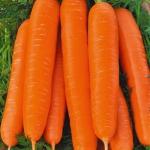 Морковь Берликумер